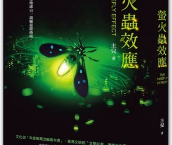 杜鵑窩人推薦:主兒《螢火蟲效應》,城邦印書館